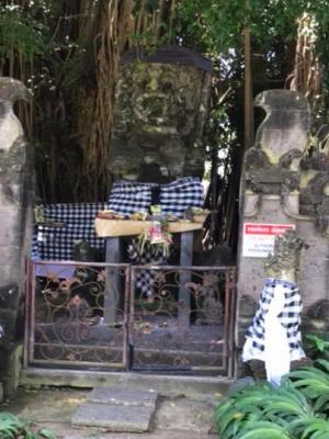 Arbre sacré et son temple habillés de poleng à Sanur (Bali).